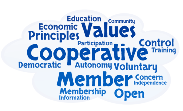 What is a Co-op?